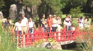Tourists at japanese garden Stock Footage