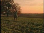 Farmer in Field Stock Footage