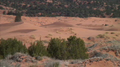Coral sand dunes pan over Stock Footage