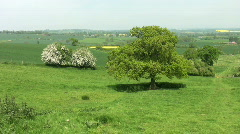 A green valley with trees and farmland in England - stock footage