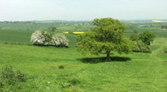 A green valley with trees and farmland in England Stock Footage