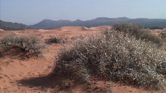 dunes stagnant - stock footage