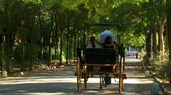 Parque De Maria lusia, Seville, Spain Stock Footage