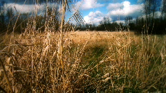 Brown Grass Field With White Clouds Stock Footage