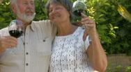 Happy senior couple enjoying wine Stock Footage