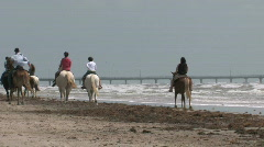 Horses on beach away 2 M HD Stock Footage