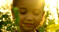 Stock Video Footage of Child in rapeseed field