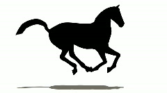 Horse silhouette Stock Footage
