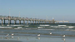 Fishing pier seagulls beach M HD Stock Footage