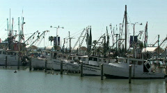 Boats shrimp marina closer Corpus M HD Stock Footage