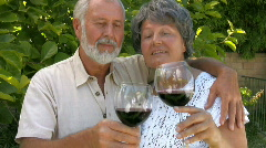 Happy senior couple hugging and drinking wine Stock Footage