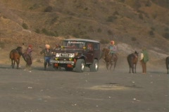 Harassing Tourists in Jeep Stock Footage