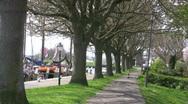 Travelhans Enktrees.mov Stock Footage