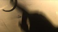 Jm343-Fin Written Stock Footage