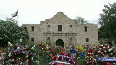 Alamo with flowers cls M HD Stock Footage