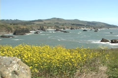 OCEAN VIEW NEAR JENNER, CA Stock Footage