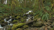 Stock Video Footage of Stream tracking motion