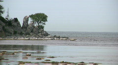 Eroded limestone coastline on the island of Gotland in Sweden Stock Footage
