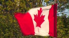 Jm390-Canada Flag Stock Footage