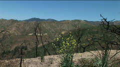 Static Canyon Vista 06 Stock Footage