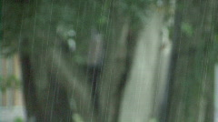 Tropical Thunder Stock Footage