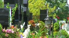 jm446-Garden Of Memories - stock footage