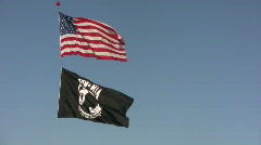 Patriotic flags Stock Footage