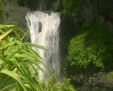 Waterfalls 16 - PAL Stock Footage
