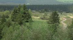 Sauerland Panorama Stock Footage