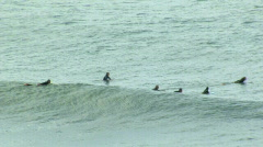 Group of Surfers Paddle Out Over Rolling Set of Waves - stock footage