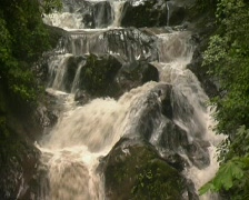 Stock Video Footage of Mountain stream in Ecuador running brown with sediment