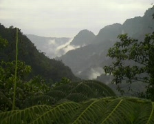 Cloudforest valley in the Ecuadorian upper Amazon Stock Footage