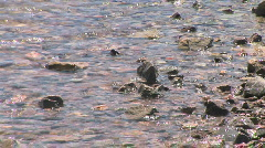 Close up of Lake Mead Shore Stock Footage