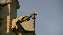 Gargoyles of the Carcassonne Cathedral Stock Footage