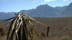 The SouthWest 39 - HD Stock Footage