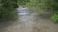 Stock Video Footage of Flooded river carrying branches downstream