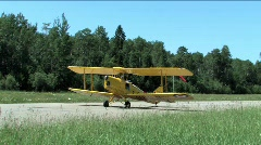 Tiger Moth Stock Footage