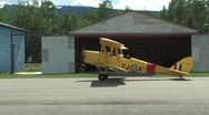 Tiger Moth Stock Footage