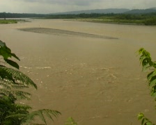 Rio Napo, A tributary of the Amazon Stock Footage