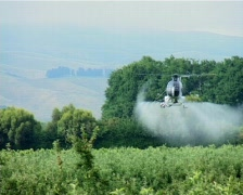 Helicopter spraying apple trees Stock Footage