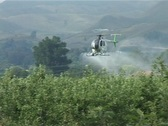 Helicopter spraying Stock Footage