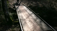 Tourist crossing wooden bridge Stock Footage