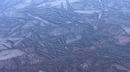 Germany Chiemgau Marshland frozen lake Stumps Stock Footage