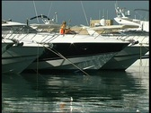 Stock Video Footage of  Yacht harbor