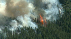 Forest Fire 4 - stock footage
