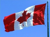 Stock Video Footage of Canadian Flag 2