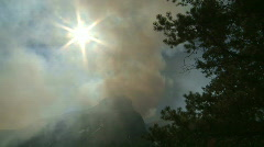 Forest Fire smoke 5 Stock Footage