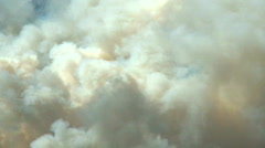 Forest Fire smoke CU 1 - stock footage