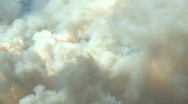 Stock Video Footage of Forest Fire smoke CU 1