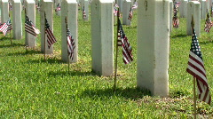 Veteran Cemetery row flag M HD Stock Footage